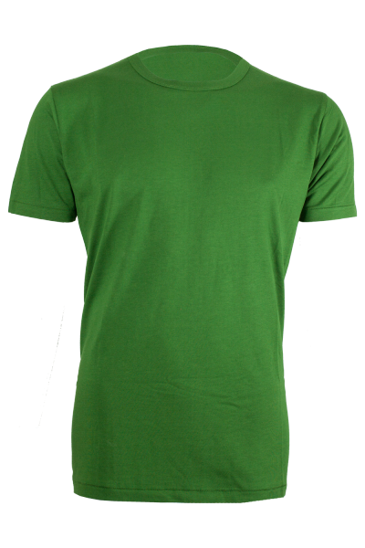 NANDU T-Shirt leaf green front